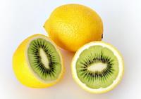Фотомонтаж лимона и киви